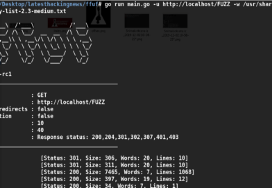 Ffuf Fuzz Faster U Fool An Open Source Fast Web Fuzzing Tool Latest Hacking News New Tricks The Fool Open Source