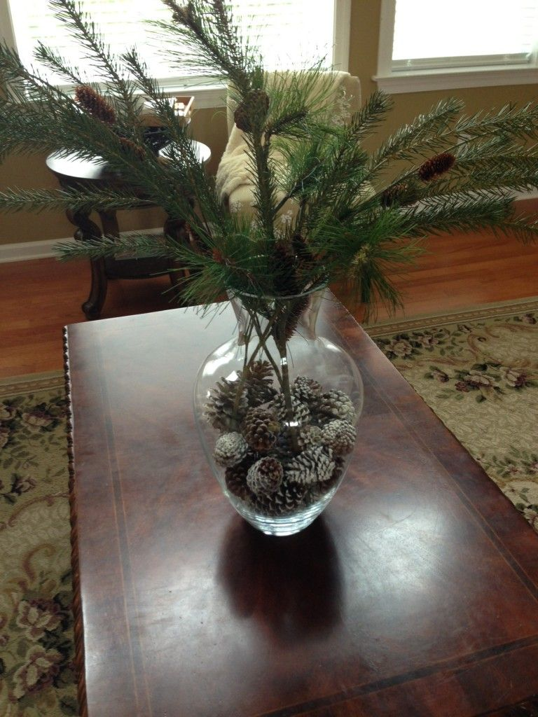 Decorating with pine cones and a clear vase apothecary jars decorating with pine cones and a clear vase reviewsmspy