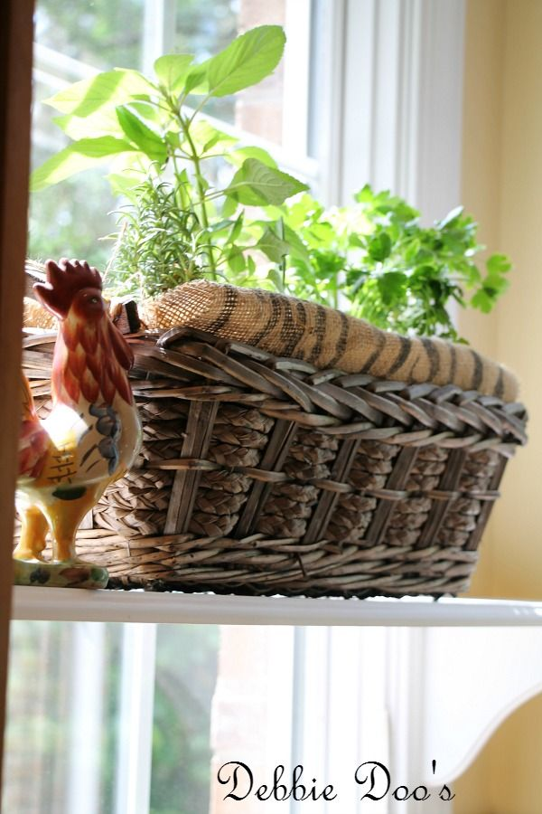 How to make an herb basket for the kitchen | Herbs garden, Herbs and Cat Flower And Herb Garden Design on herb garden design plans, herb knot garden design, herb garden layout design, herb container gardens, herb garden clip art, herb garden planning, herb landscaping, herb garden design software, herb garden ideas,