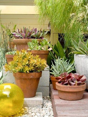 small garden containers