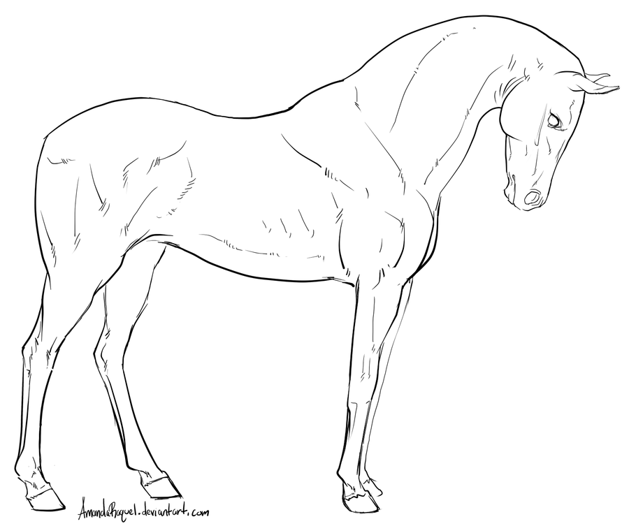 gaited horse lineart - Google Search | colorear | Pinterest ...