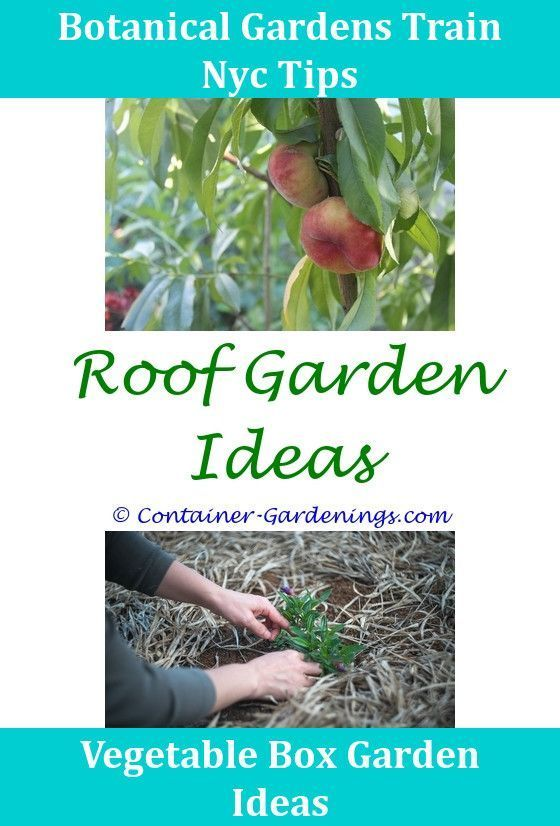Diy Rooftop Garden Ideas,drainage ideas for container gardening ...