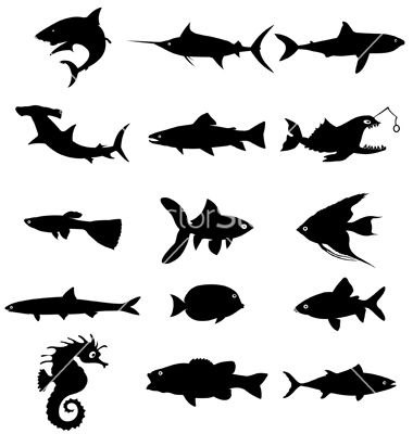 Fish Silhouettes Vector Art Download Fish Vectors 91289 Fish Silhouette Silhouette Vector Animal Silhouette