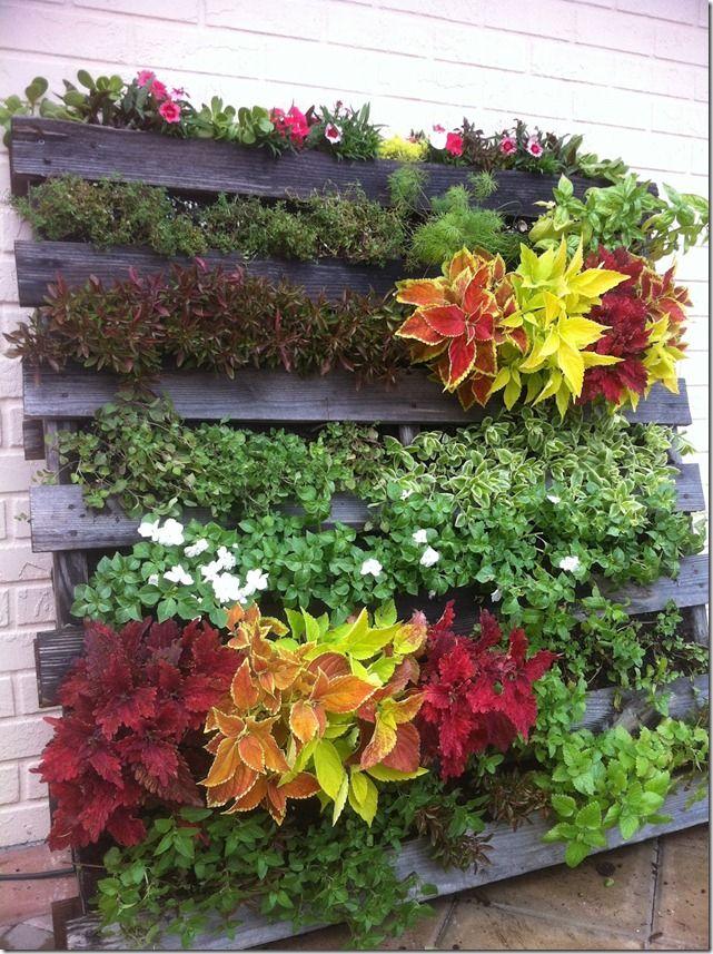 Como Hacer Un Jardin Vertical Con Un Palet Jardines Verticales Jardines Jardines Colgantes