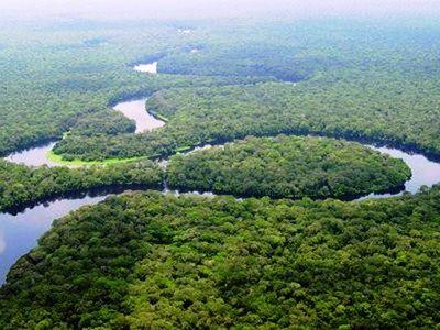 Bassin du Congo : des experts à Kinshasa pour un atelier de capitalisation des résultats