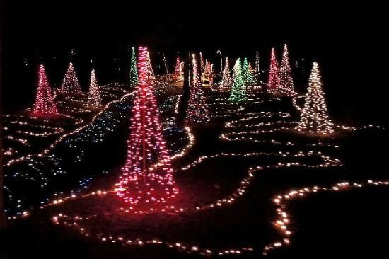 Mike\u0027s Farm and Country Store Beautiful Lighted Christmas Trees