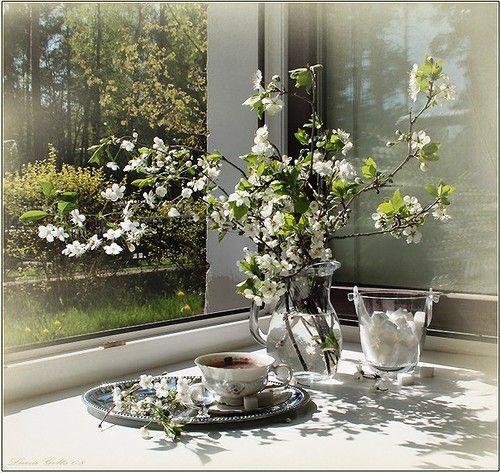 Spring tea-2.jpg