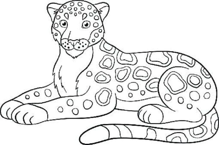 Simple Jaguar Coloring Pages Coloring Pages Animal Coloring Pages Jaguar Colors