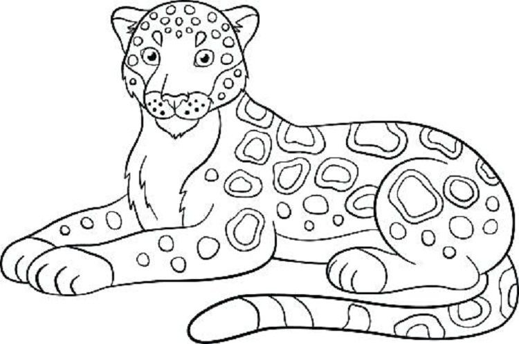 Simple Jaguar Coloring Pages Coloring Pages For Kids Coloring