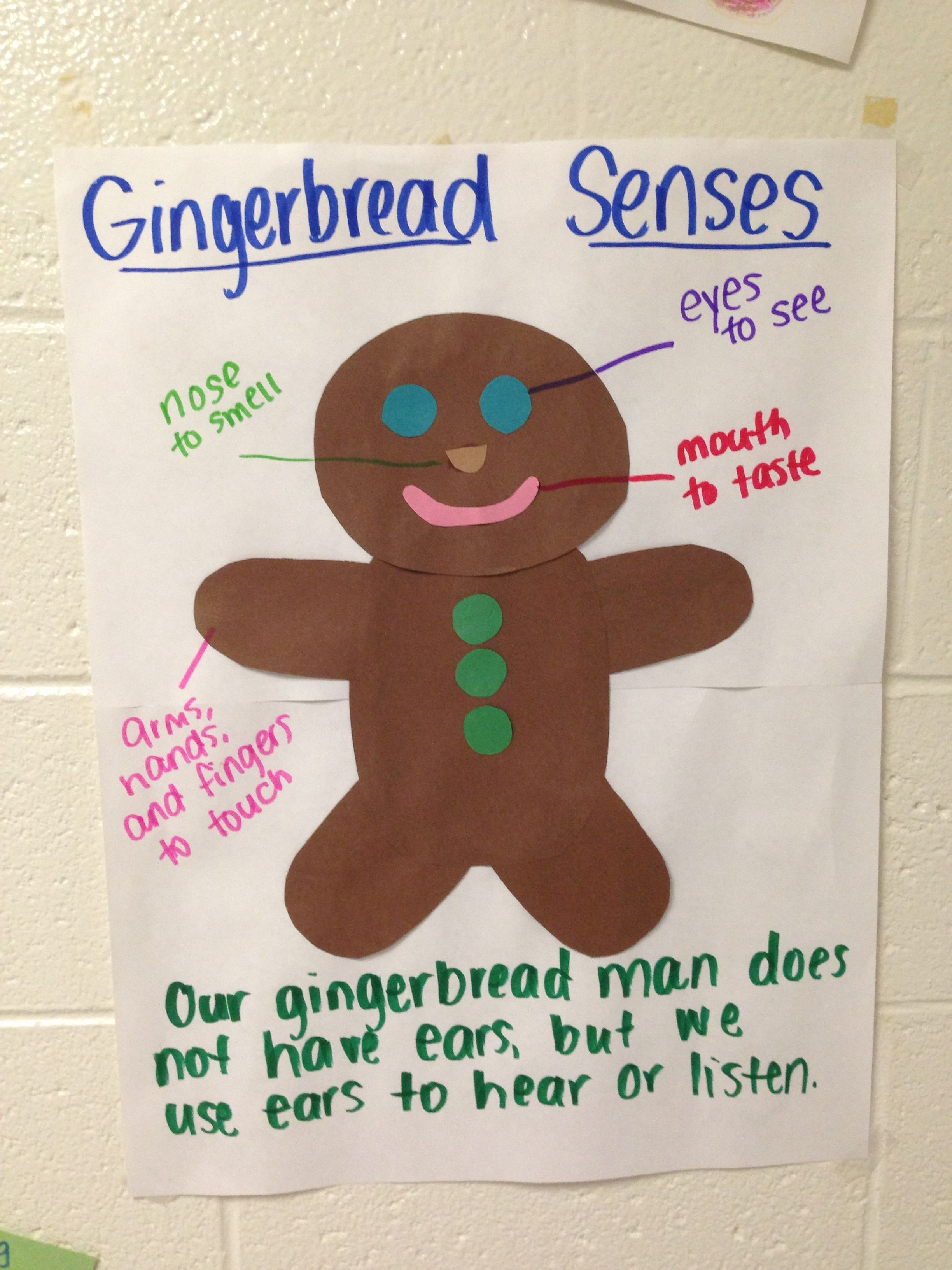 Teaching Pre K About The 5 Senses Using The Gingerbread