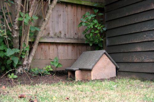 Building a Hedgehog House | Hedgehog house, Diy hedgehog ...