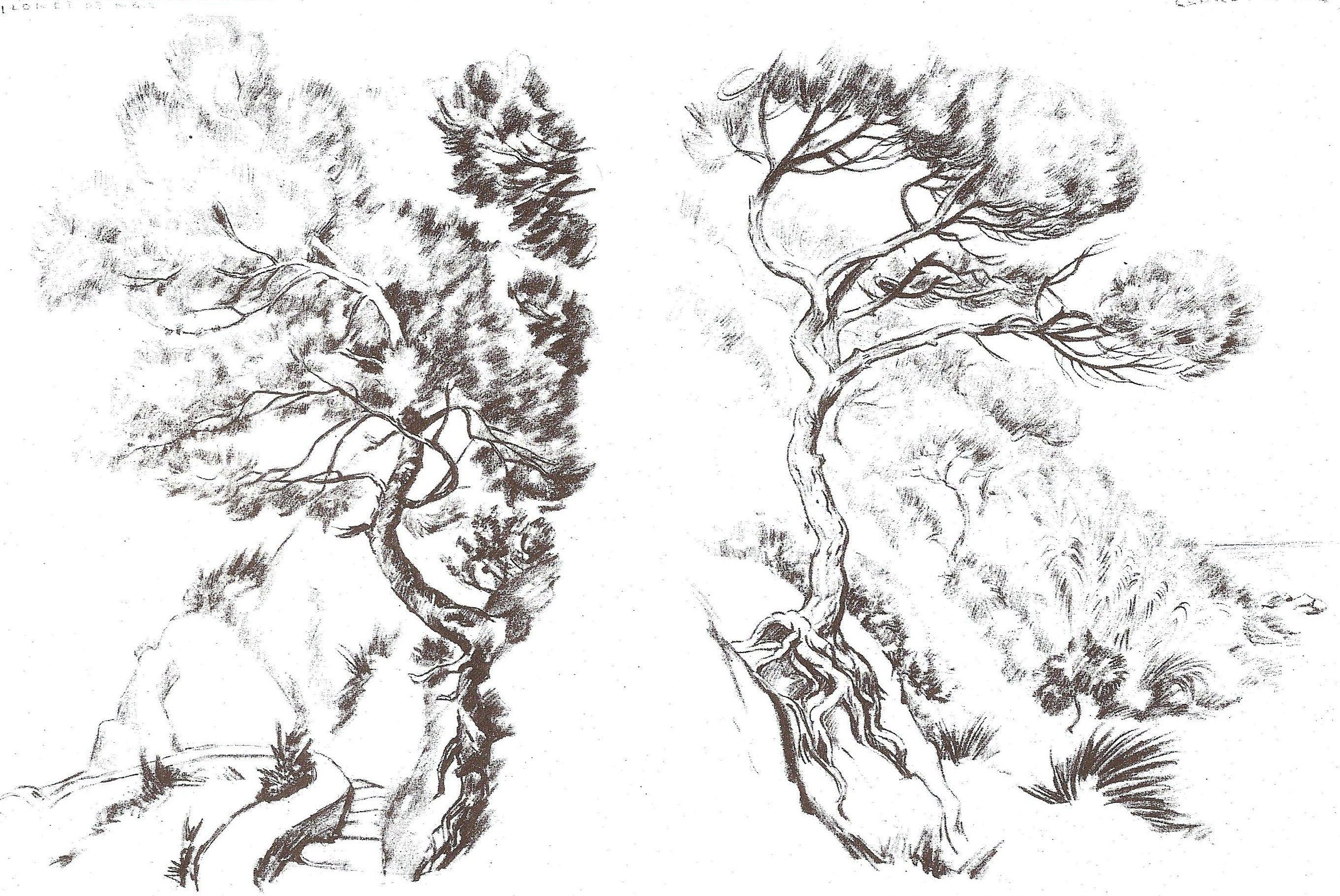 plantillas pirograbado - Buscar con Google | Plantillas paisajes ...
