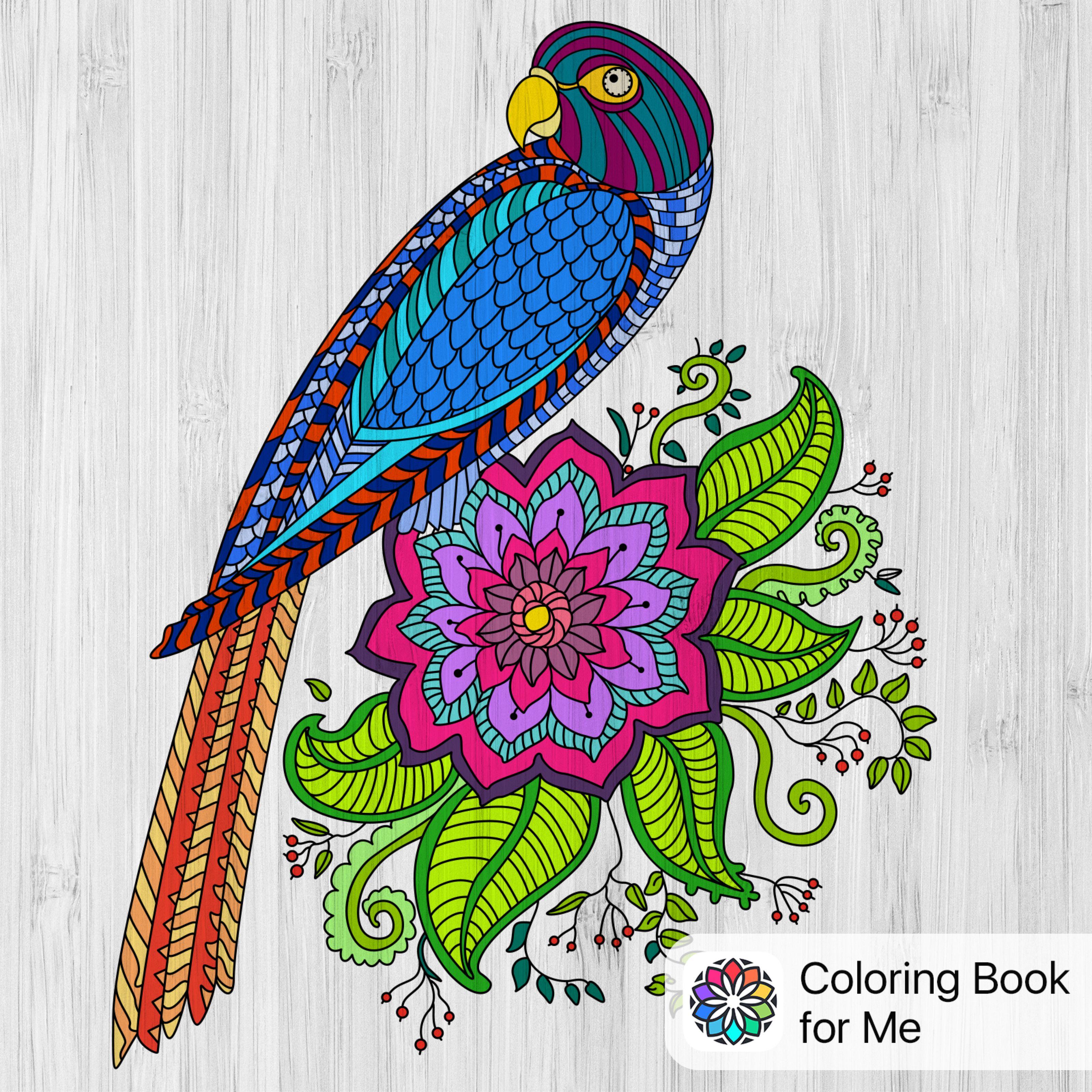 Coloreado con: Libro de colorear para mí | Mis dibujos | Pinterest ...