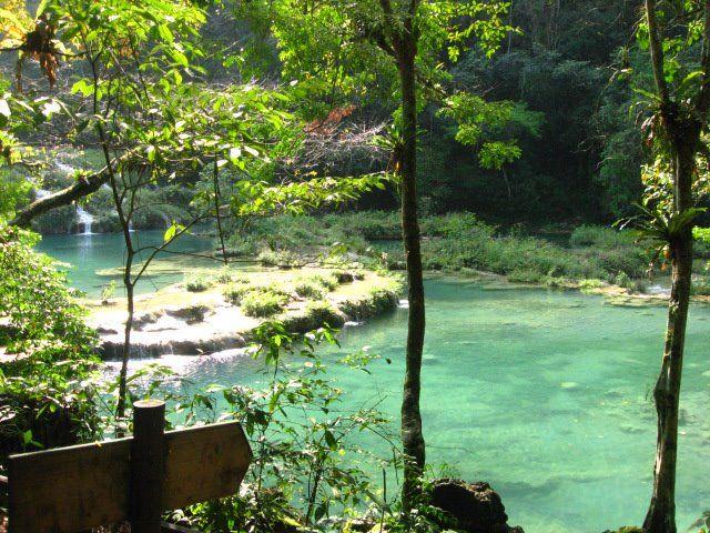 Tarzan's backyard pool (in real life it's called Semuc Champey)