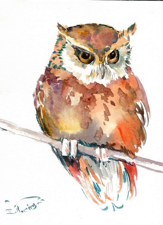Babe Owl Original Watercolor Painting 12 X 9 In Chockolade