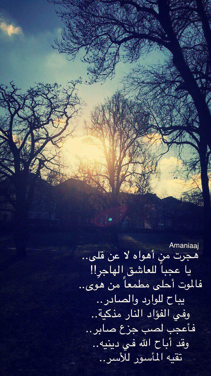 ابن حزم الأندلسي Ibn Hazim Alandlosy In This Moment My Eyes Poster