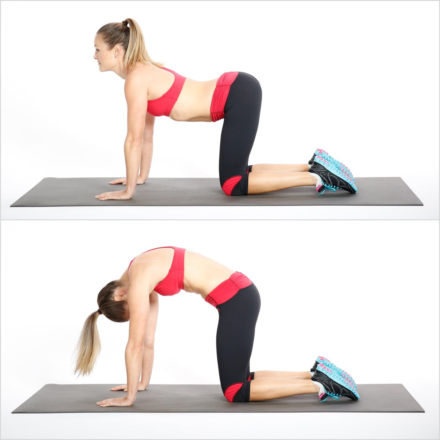 43++ Cat cow stretch for back pain ideas in 2021