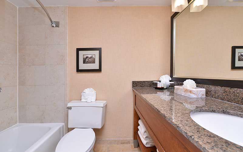 Embassy Suites Austin Central Hotel Bathroom Vanity