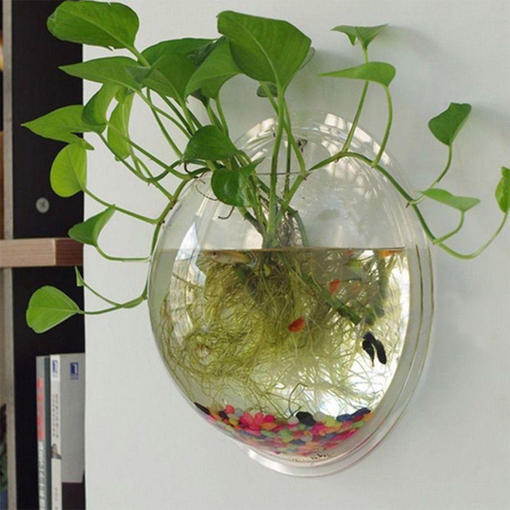 Aquariums eBay Pet Supplies Hanging plant wall, Wall