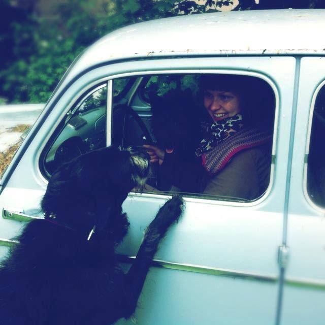 Stella Karlsson - Haussa mummonmökki!  Aina ei kaikki mene elämässä niin kuin haluaisi, mutta olen lukenut ettei periksi kuulemma kannata antaa. Tai ainakin on yritettävä kaikkensa ennen kuin lyö hanskat tiskiin. Vedän siis ne työhanskat vielä kerran käteen ja kokeilen sosiaalisen median taikavoimia.   Kuvassa olen kahden koirani kanssa, ne ovat kivoja ja kilttejä tyyppejä, mutta äänekkäitä ja saattavat joskus yksi…