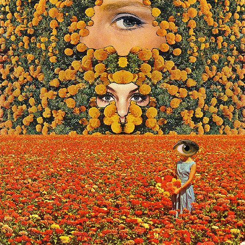 Eyes on flowers por Mariano Peccinetti  ... | Collage Art by Mariano Peccinetti