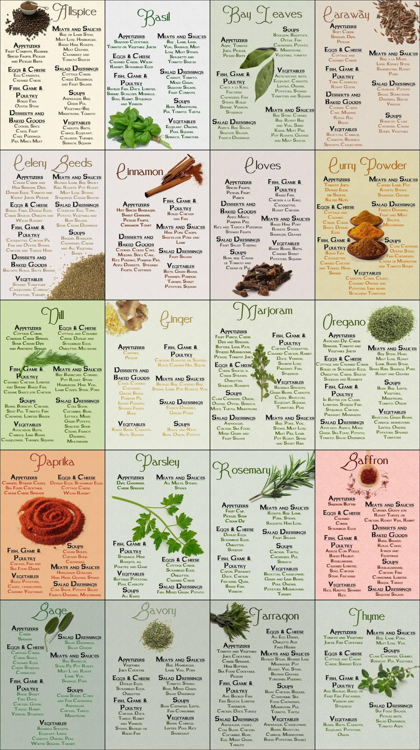 Herb & Spices Cheatsheet - Pretty much saved my co