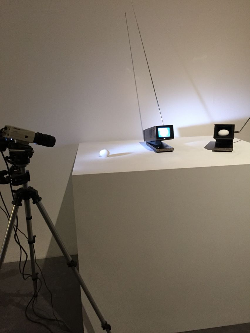 Egg. Tate modern installation