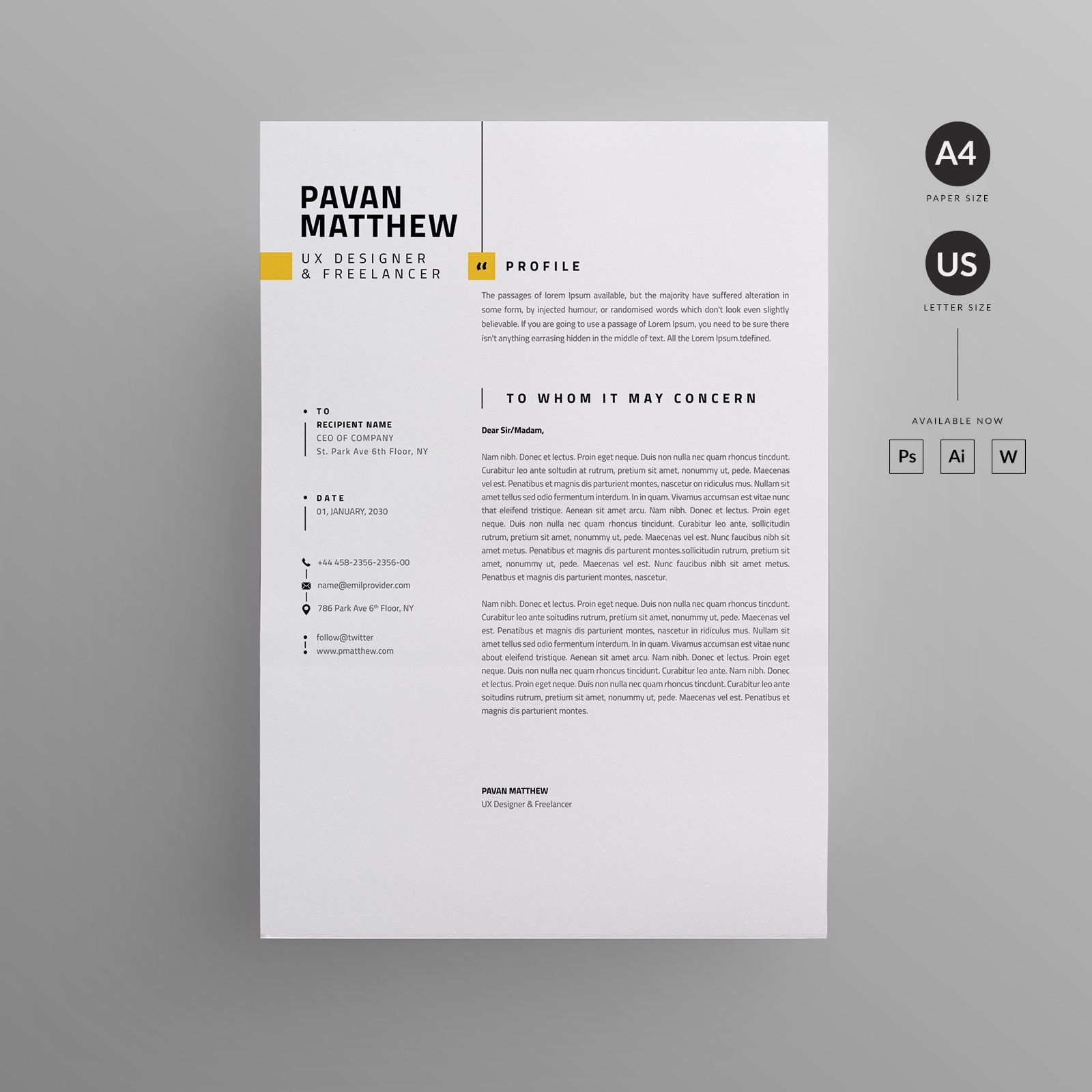 Simple Resume Layout Design