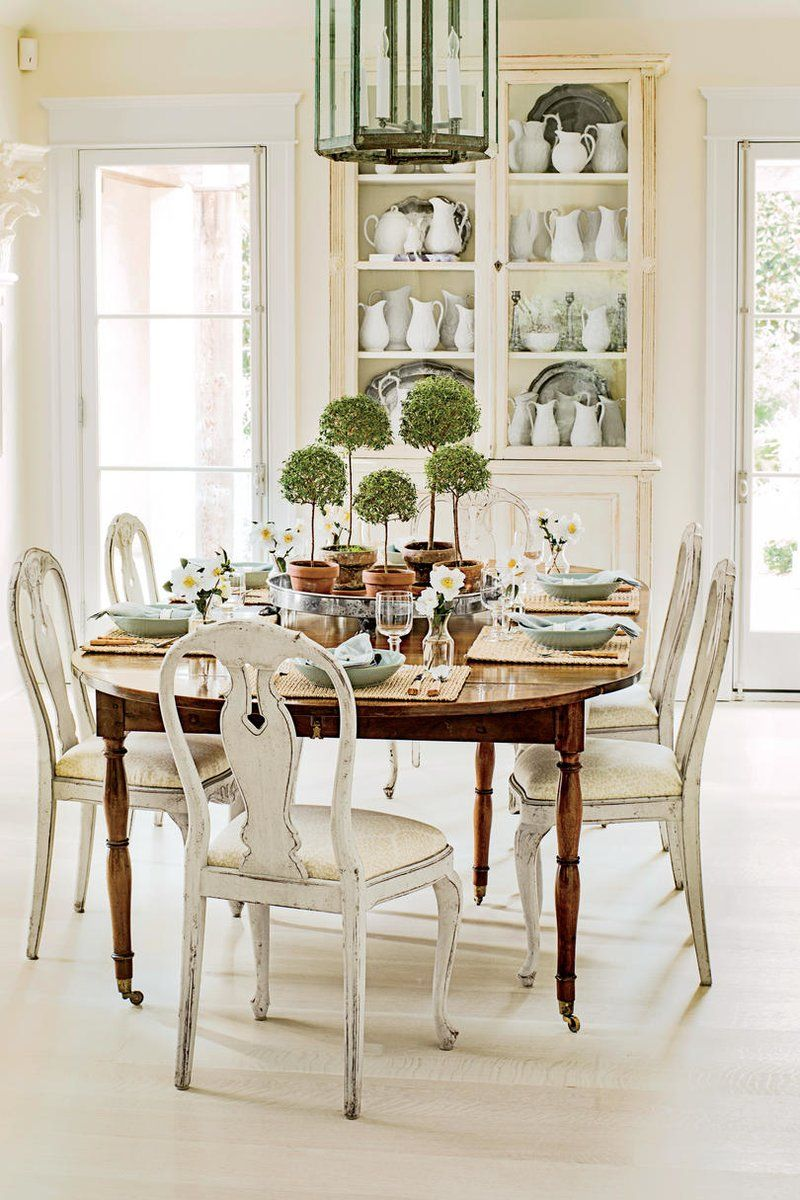 Potted Topiary Trees for Winter Breakfast buffet table
