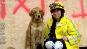 Last known Ground Zero rescue dog returns to NYC #groundzeronyc Last known Ground Zero rescue dog returns to NYC - Yahoo News #groundzeronyc