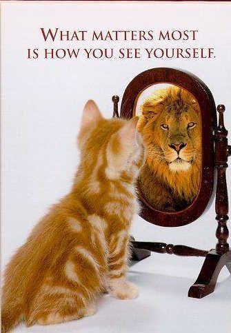 Image result for cat looking in a mirror and seeing a lion