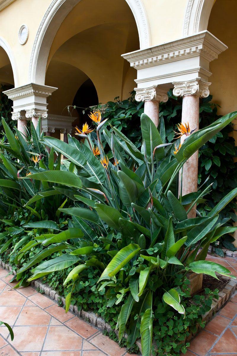 Les jardins   Villa & Jardins Ephrussi de Rothschild : Palais de la ...