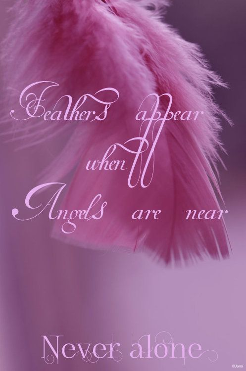 Feather appear when Angels are near. Never Alone.