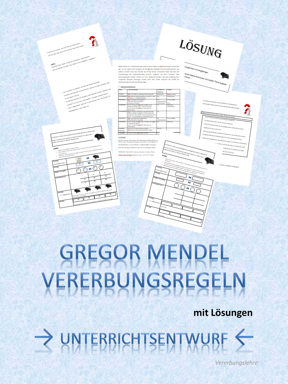 Biologie Vererbung Mendel Unterrichtsentwurf Unterrichtsmaterial Im Fach Biologie Klassische Genetik Biologie Vererbungslehre