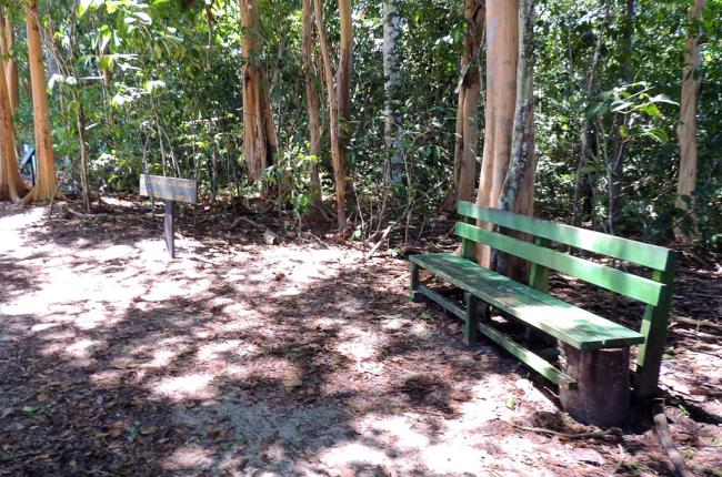 A park bench on the trail beside Espadilla Sur Beach