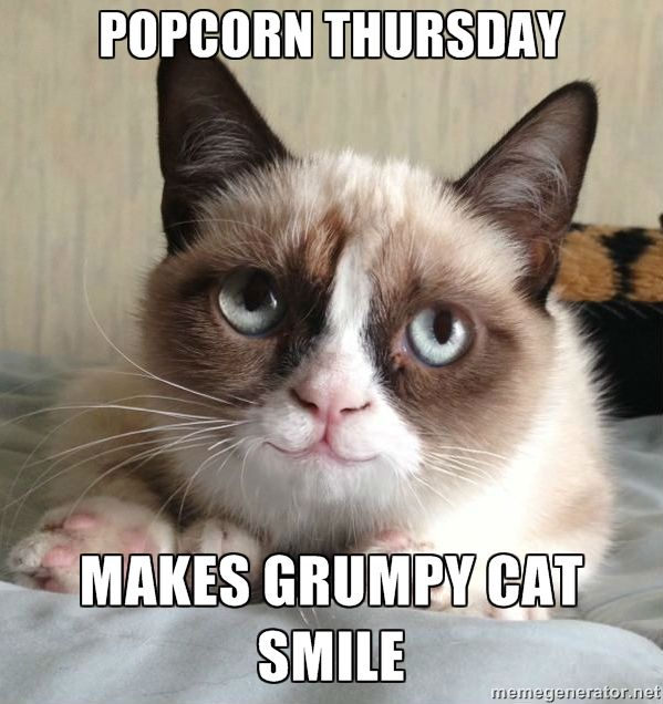 Happy Thursday Cat Meme Funny Grumpy Cat Memes Grumpy Cat Humor Grumpy Cat Quotes