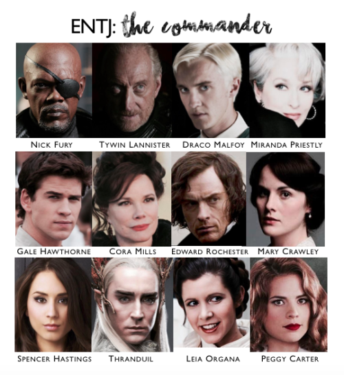 Scribbling In The Dark — ENTJ Character Chart | e n t p