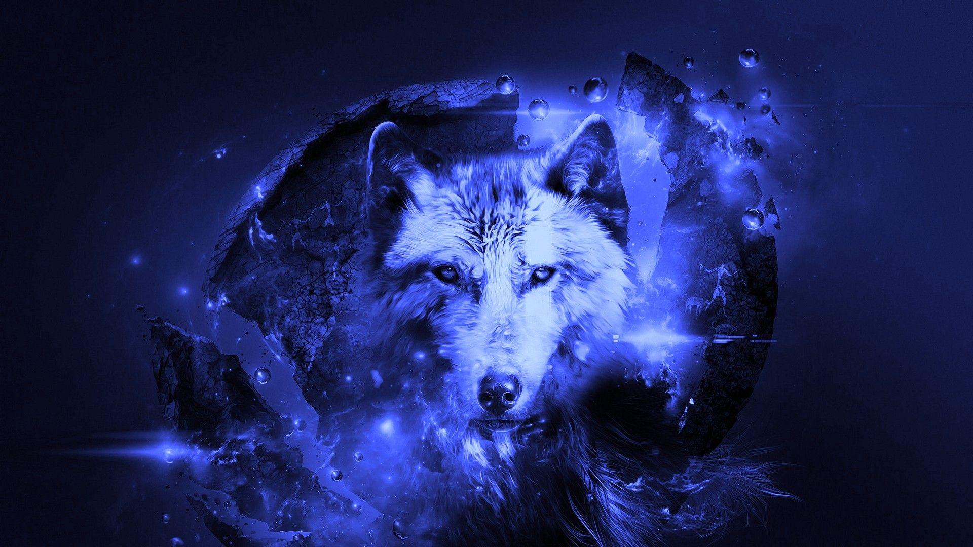 Best Cool Wolf Wallpaper Hd 2021 Live Wallpaper Hd Wolf Wallpaper Hd Cool Wallpapers Live Wallpapers