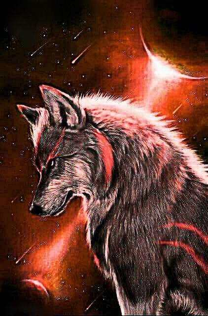 Awesomewolfphotos Wolf Wallpaper Fantasy Wolf Wolf Painting Anime wallpaper red wolf