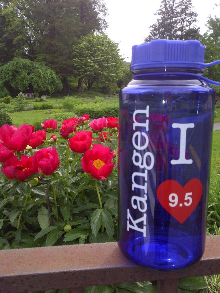 Kangen Water Bottles Kangen Bottle With Peonies Kangen Kangen Water Bottle
