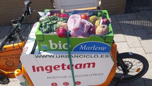 El Cesto Ecologico. Www.urbanciclo.es - Tw: @urbancicloalba- f: Urban Ciclo - Instagram: @urbanciclo #urbanciclo #ecomensajeria  #Albacete #cargobike #bicimensajeria #bikemessengers #bullitteer #bullitt #bullittlife #messlife #bikecourier #transportesostenible