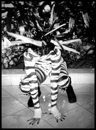 My Zebra girl I did for a fantasy competition