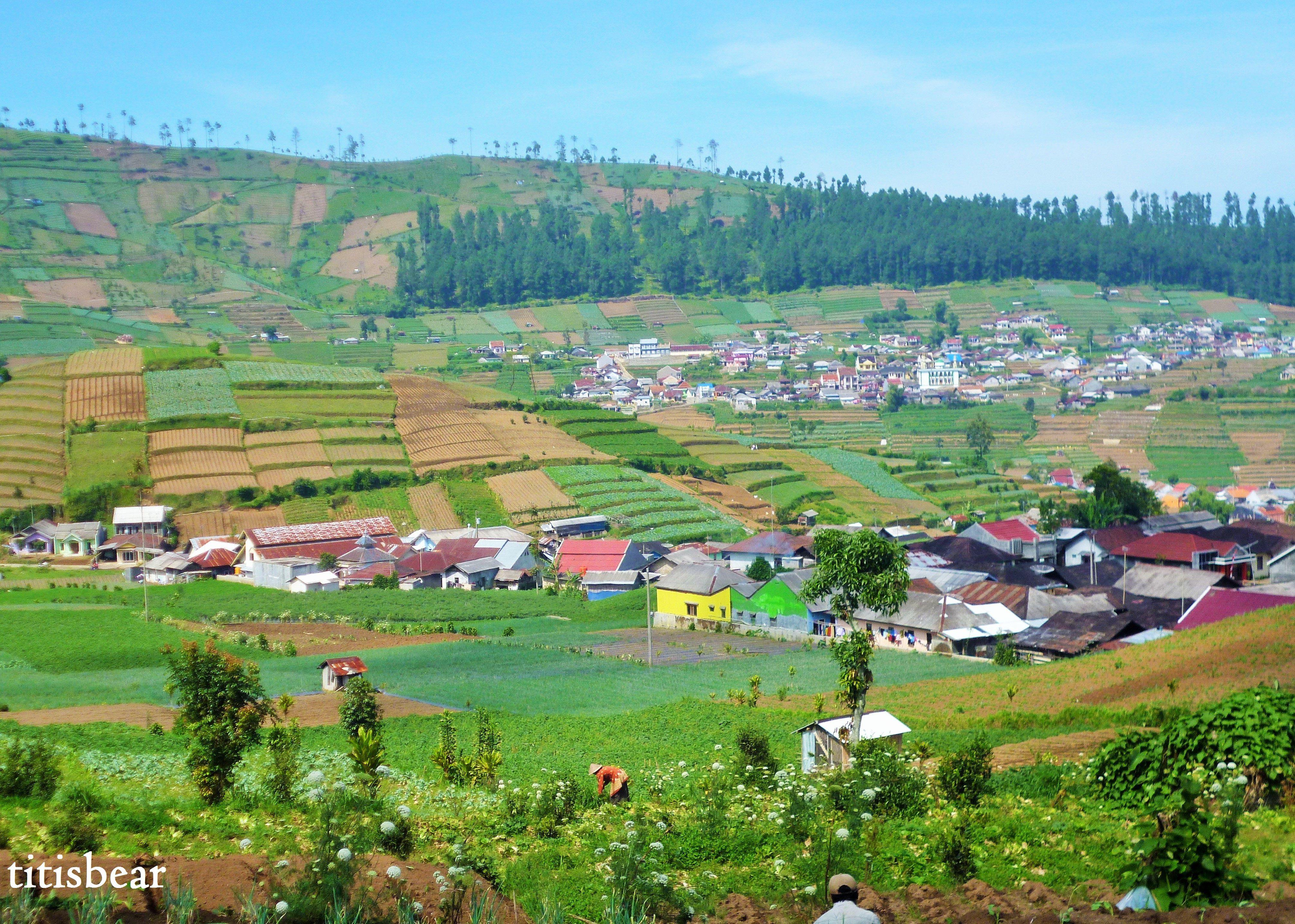 kaki gunung slamet desa batursari kabupaten tegal jawa tengah