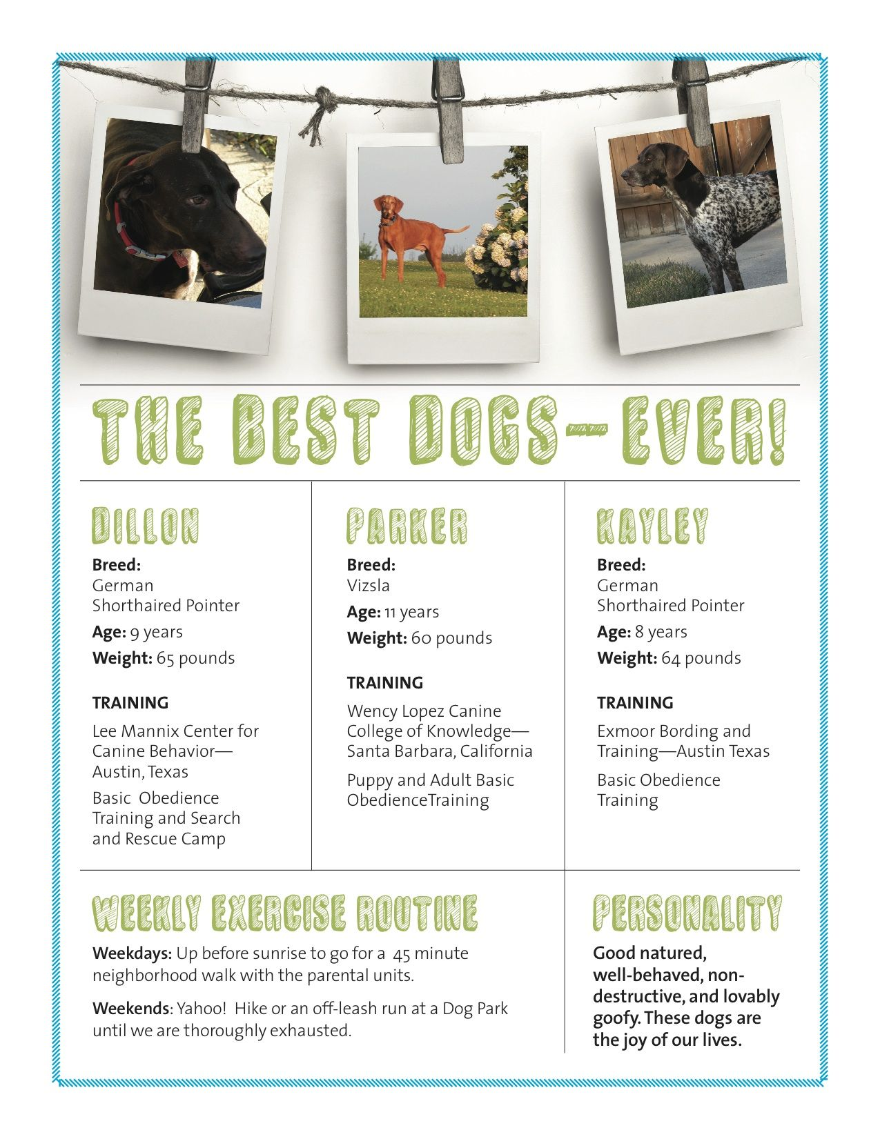 resume Dog Resume pet resume example designer for hire adorable hire