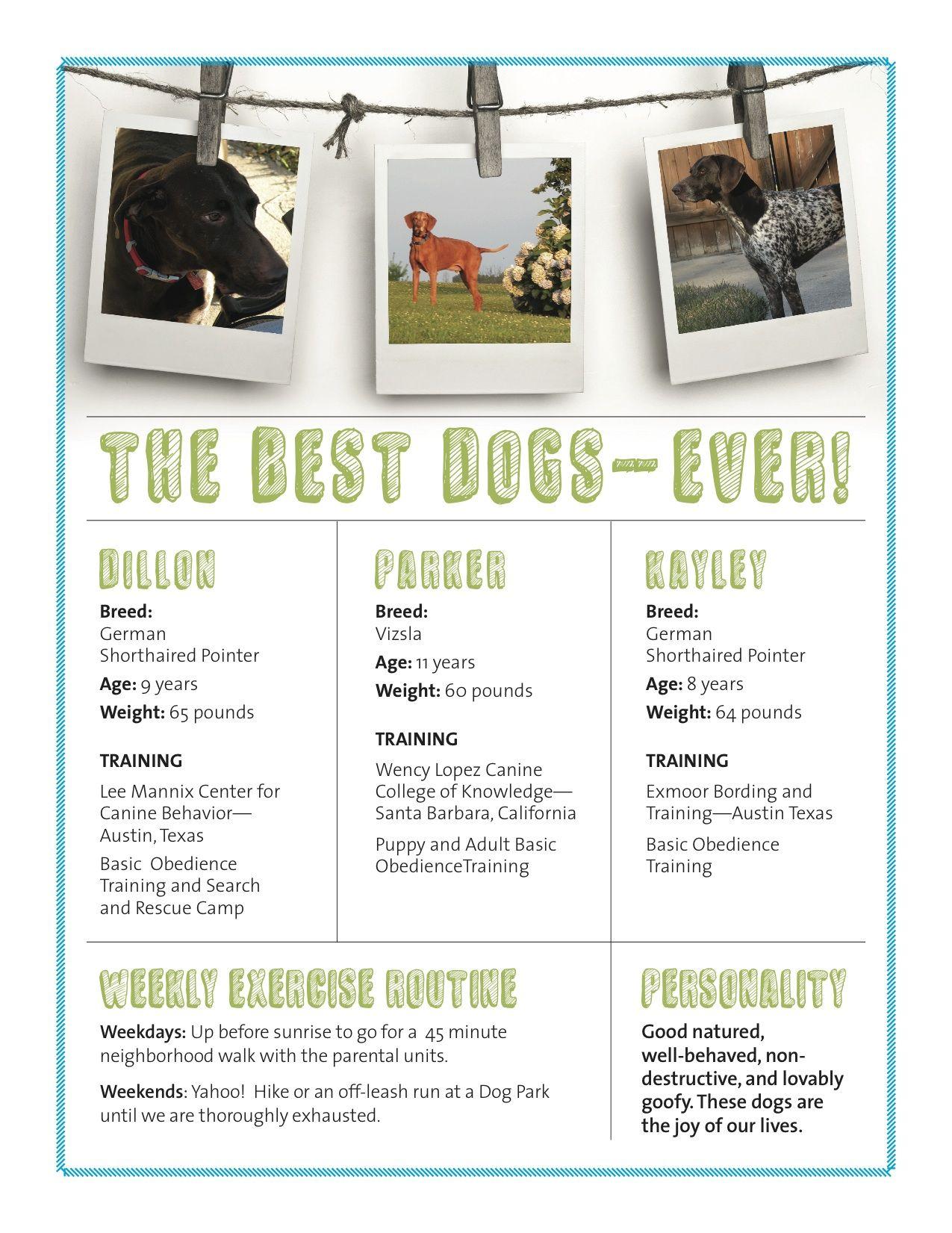 Meet A Professional Dog Resume Writer Resume Design Resume Design Free Resume Design Layout