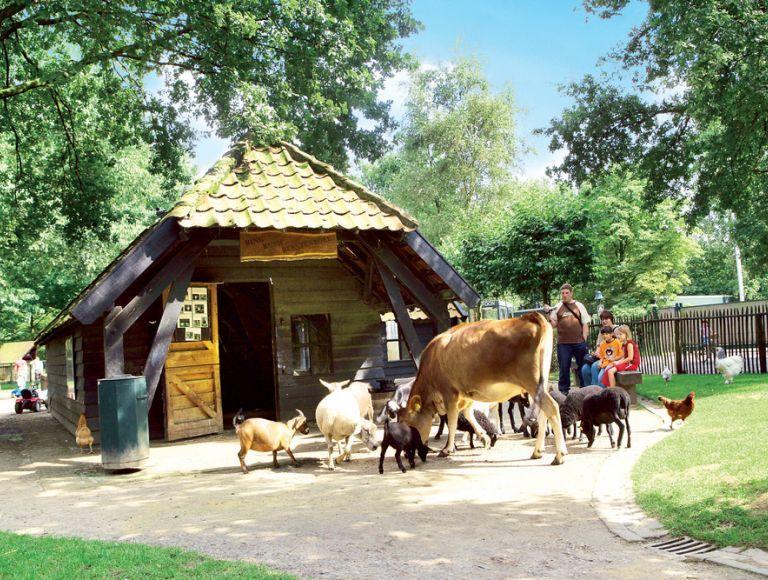 Center Parcs Het Meerdal | Neckermann Reisen | Reisen ...