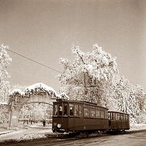 Zagreb 1930 Croatia Schwan