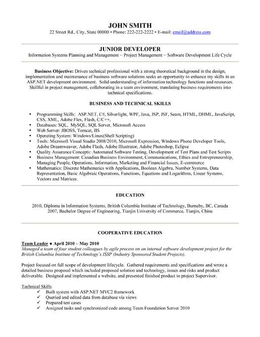 Click Here to Download this Junior Developer Resume Template!   - programmer analyst resume sample