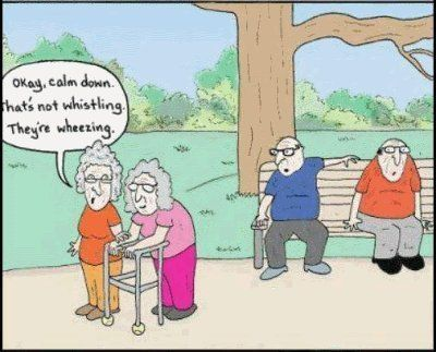 Senior Citizen stories jokes and cartoons  Senior humor