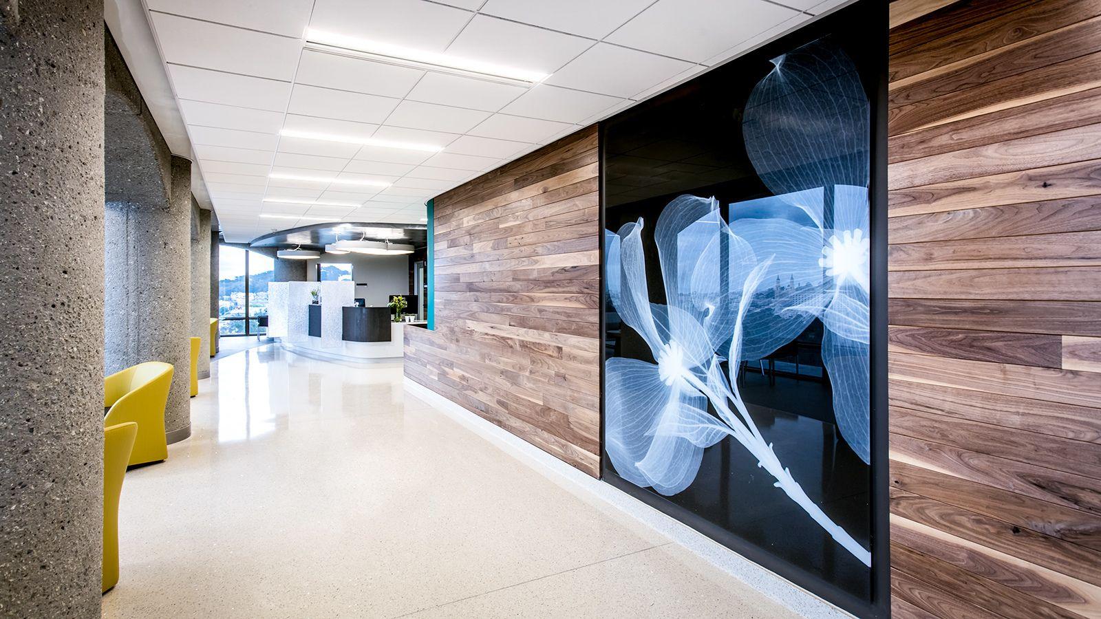 Skyline Design glass installation at UCSF featuring Botanica Dogwood